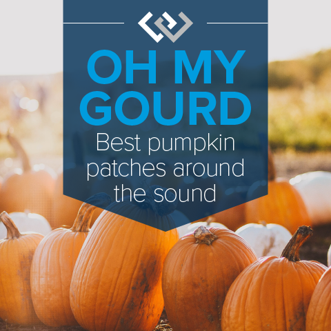PumpkinBlog